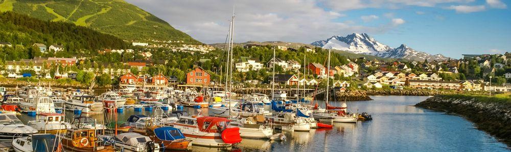 Utsikt over Narvik, sjø og fjell