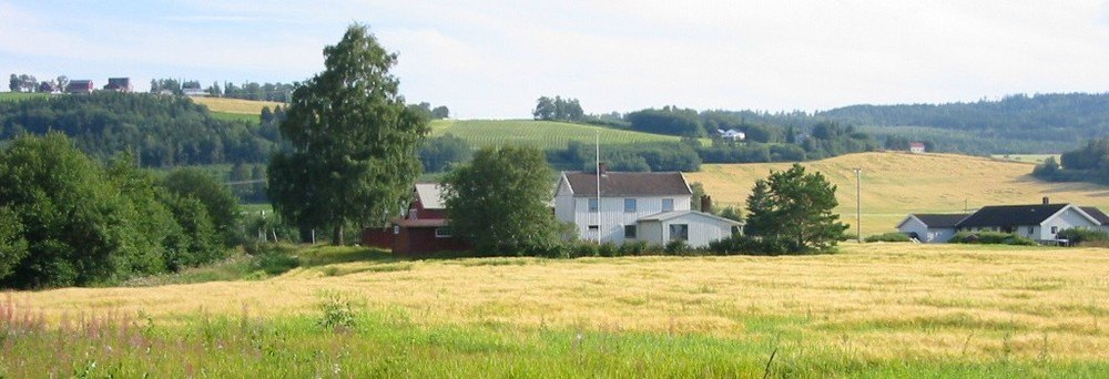 Gård i Verdal