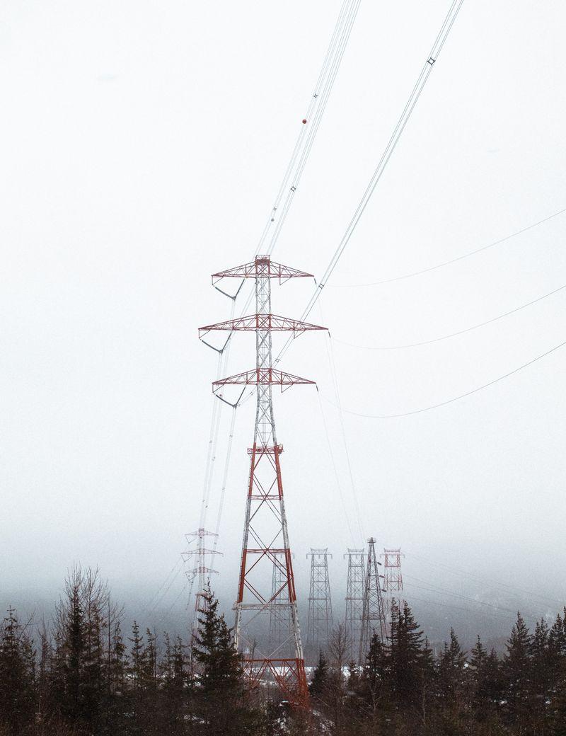 Bilde av strømmaster i en skog på vinteren