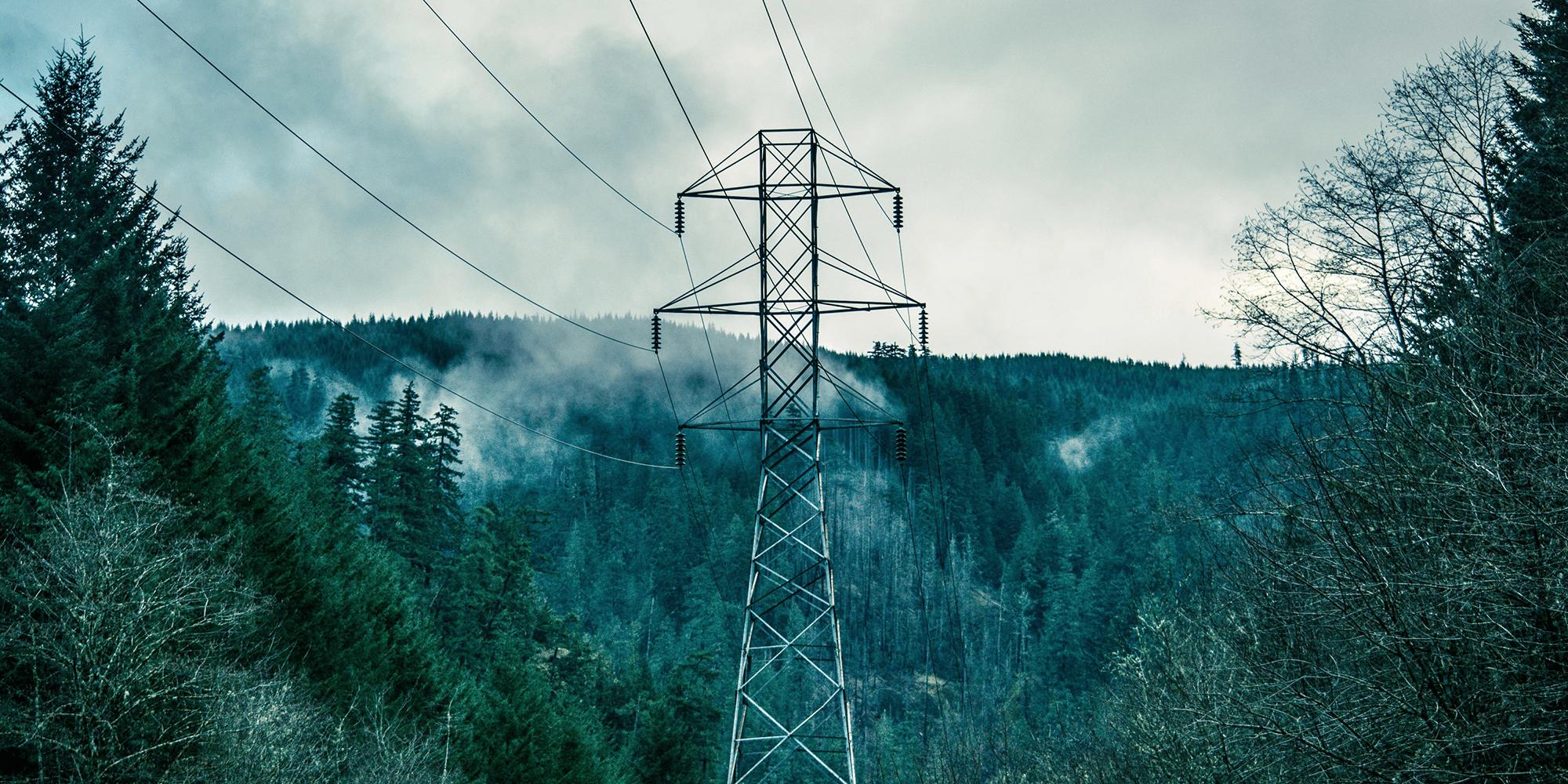 Bilde av strømmaster i norsk skogslandskap