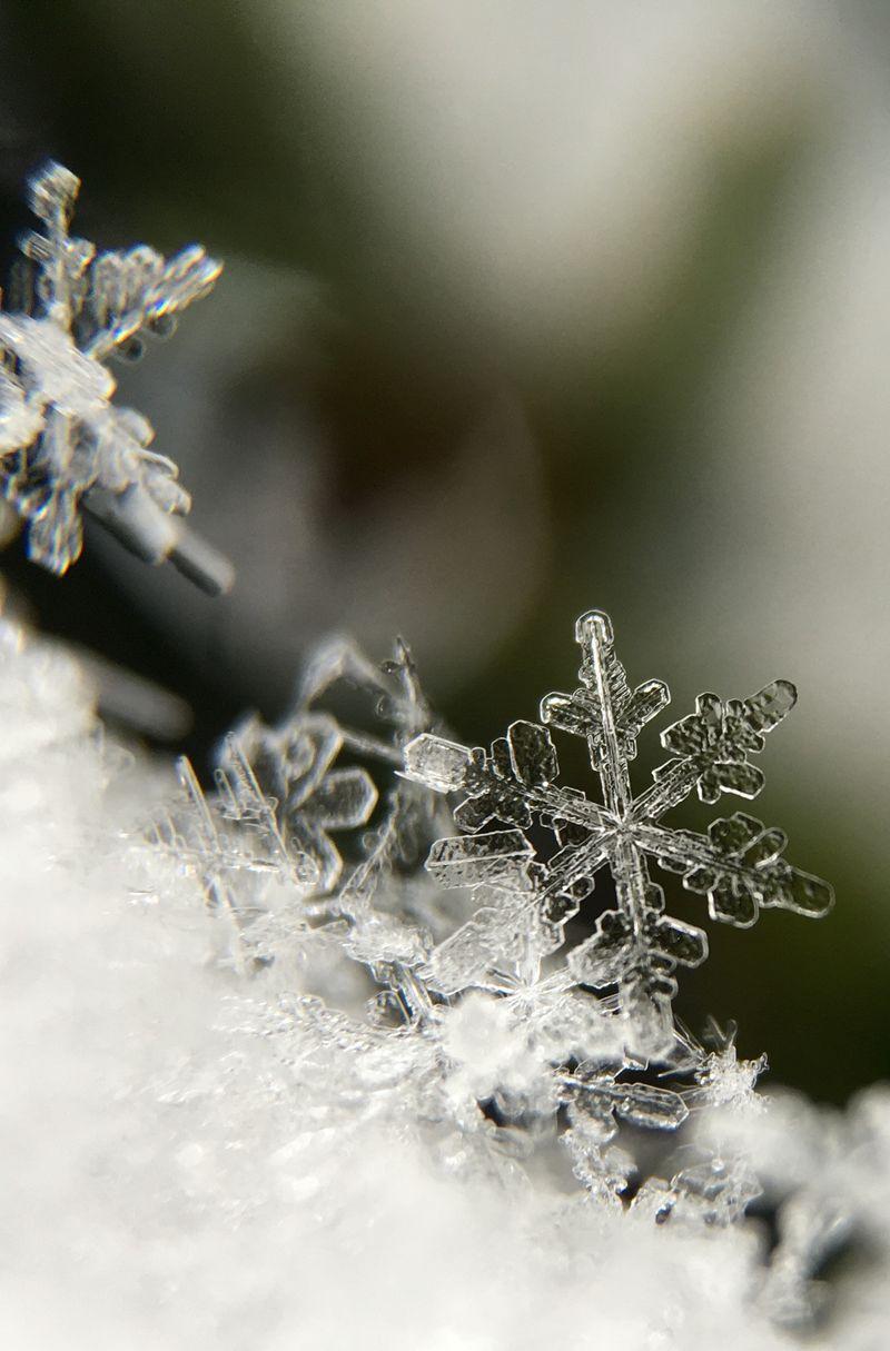 Bilde av snøfnugg